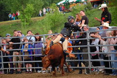 Rodeo show Stock Photo