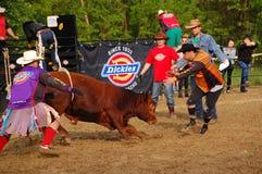 Rodeo show Stock Photos