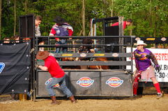 Rodeo show Royalty Free Stock Photography
