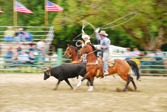 Rodeo South Royalty Free Stock Images