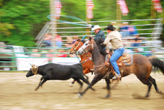 Rodeo South Stock Photo