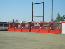 Rodeo Starting Gates Royalty Free Stock Photo