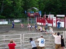 Rodeo Stick Horse Race Stock Photos