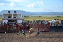 Rodeo w małym viliage Obrazy Stock