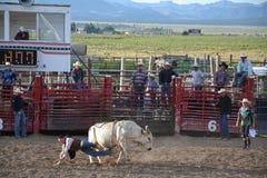 Rodeo w małym viliage Zdjęcia Stock