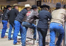 Rodeo  Watchers Royalty Free Stock Photos
