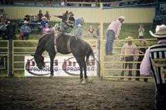 Rodeo y vaqueros Fotos de archivo libres de regalías