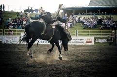 Rodeo y vaqueros Imagen de archivo libre de regalías