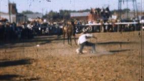 Rodeocowboy Calf Roping (Archivistische jaren '50) stock videobeelden