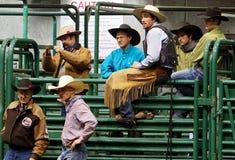 Rodeocowboyer Royaltyfri Bild