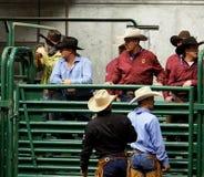 Rodeocowboyer Fotografering för Bildbyråer
