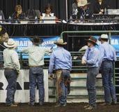 Rodeocowboyer och domare Royaltyfri Fotografi