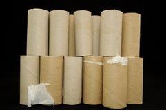Rodillo vacío del papel higiénico Foto de archivo libre de regalías
