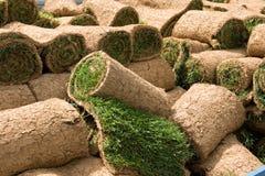 Rodillos 1 de la hierba Imagen de archivo libre de regalías