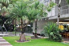 Rodin Museum from Bahia Royalty Free Stock Photo