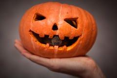 Roditore in zucca di Halloween Fotografia Stock Libera da Diritti