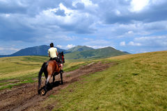 Rodnabergen in Roemenië - paard met de mens Stock Foto