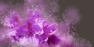 Rododendro da aquarela Foto de Stock