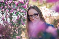 Rododendro de floresc?ncia do maralnik em montanhas de Altai fotos de stock