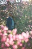 Rododendro de floresc?ncia do maralnik em montanhas de Altai foto de stock royalty free