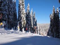 Free Rodopi Mountain Stock Photography - 22846372