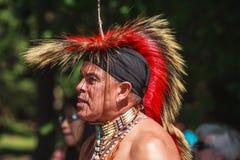 Rodowitego Amerykanina indianin Zdjęcie Royalty Free