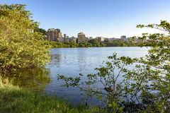 Rodrigo de Freitas lagoon. In Rio de Janeiro seen through the vegetation that surrounds it Royalty Free Stock Photography