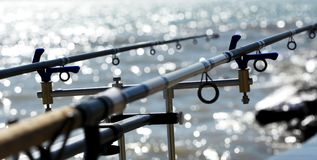 Rods chez le Lac Balaton hungary photographie stock libre de droits