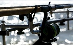 Rods chez le Lac Balaton hungary photographie stock