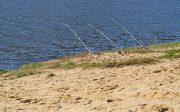 Rods on the river beach Royalty Free Stock Photo