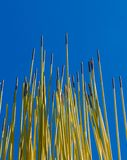 Rods To The Sky. Yellow steel rods with a blus sky background stock photos