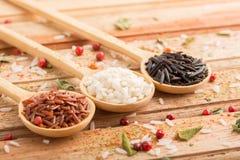 rodzajów ryż trzy zdjęcia stock