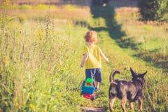 Rodzaj i pies w outdoors letnim dniu obrazy stock