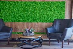 Rodzajowy pojęcie wizerunek dekoracyjny mech Używać dla wewnętrznego projekta, organicznie świeżego utrzymania lub powierzchni bi zdjęcia royalty free