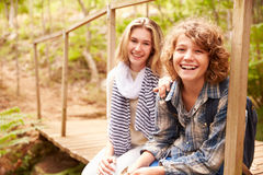 Rodzeństwa siedzi na drewnianym moscie w lesie, portret Obraz Stock
