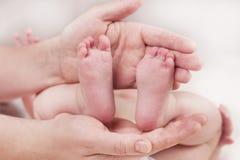 Rodzic trzyma delikatnych małych pięknych cieki w nowonarodzonym dziecku obraz royalty free