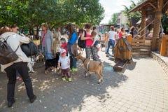 Rodzice z dziećmi w zoo Fotografia Stock