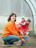 Rodzin pracy w szklarni Fotografia Royalty Free