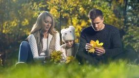 Rodzina bawić się z spadku kolorem żółtym opuszcza w pięknym parku, wydaje czas wpólnie zdjęcie royalty free