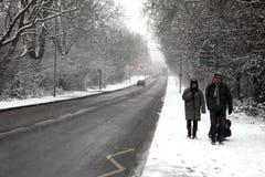 Rodzina cieszy się zimy przespacerowanie w ciężkim spadku śnieg zdjęcie royalty free