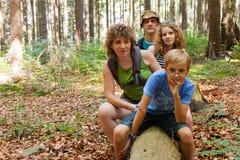 Rodzina i drzewo Obraz Stock
