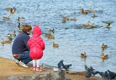 Rodzina i kaczki Obraz Stock