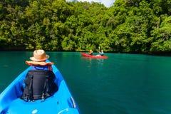Rodzina kayaking w mangrowe Fotografia Royalty Free