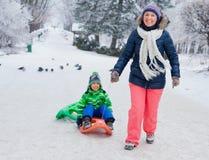 Rodzina ma zabawę z saniem w zima parku Obrazy Stock