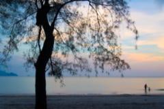 Rodzina na morzu i drzewo w wieczór Zdjęcia Royalty Free
