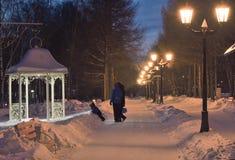 Rodzina w wieczór parku w zimie obrazy royalty free