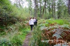 Rodzina wycieczkuje blisko Loch Lomond, Szkocja Fotografia Royalty Free