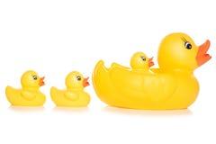 Rodzina zabawkarskie kaczki Zdjęcie Stock