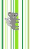 rodzinna koala Fotografia Royalty Free