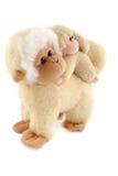 rodzinne małpy Obraz Royalty Free